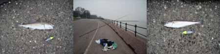 Maddock Slip, River Mersey